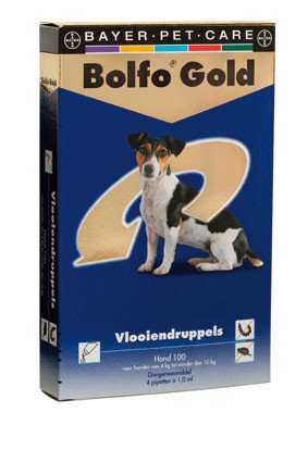 Bolfo Gold Hond 100 > 4 Pipet