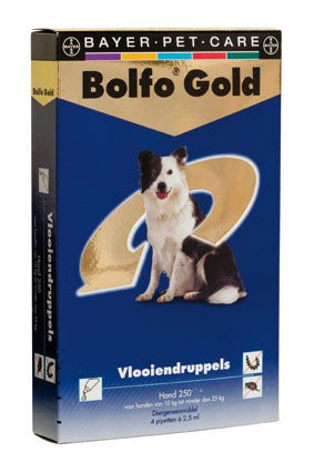 Bolfo Gold Hond 250 > 4 Pipet