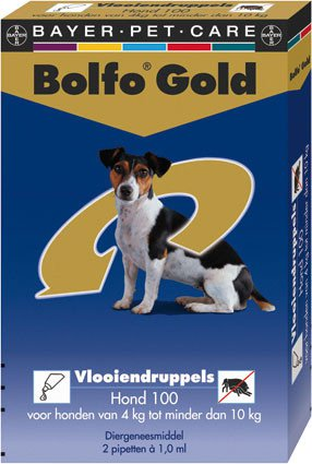 Bolfo Gold Hond 100 > 2 Pipet