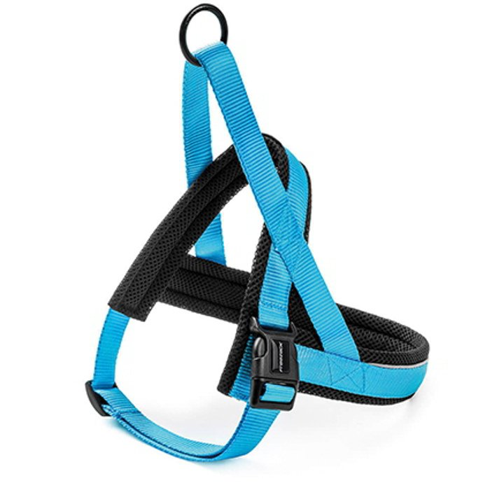 Freezack Harness Nordic Basic Turquoise XS