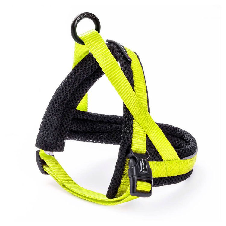 Freezack Harness Nordic Basic Yellow Mini3