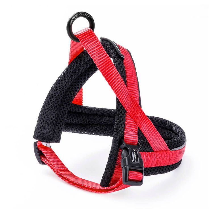 Freezack Harness Nordic Basic Red Mini1