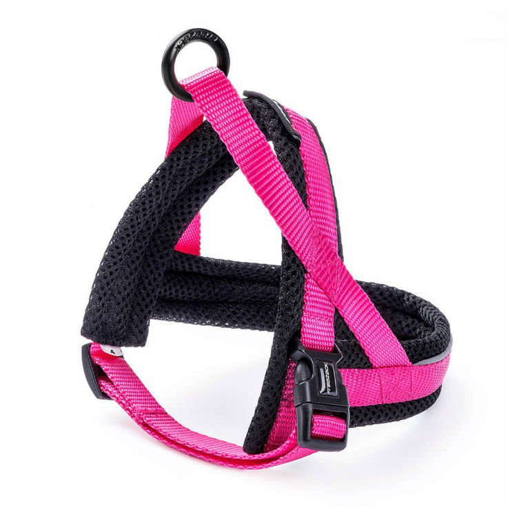 Freezack Harness Nordic Basic Pink Mini2