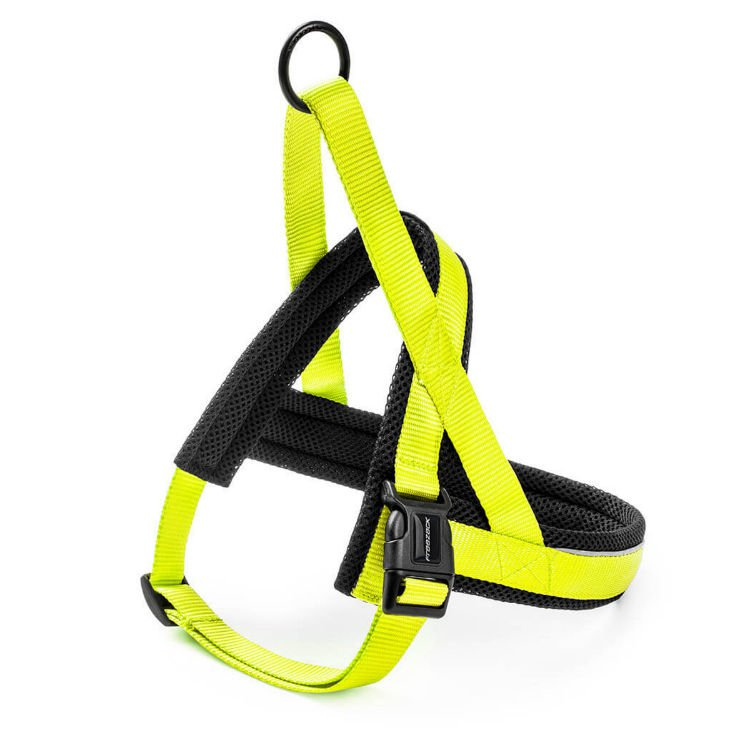 Freezack Harness Nordic Basic Yellow XS