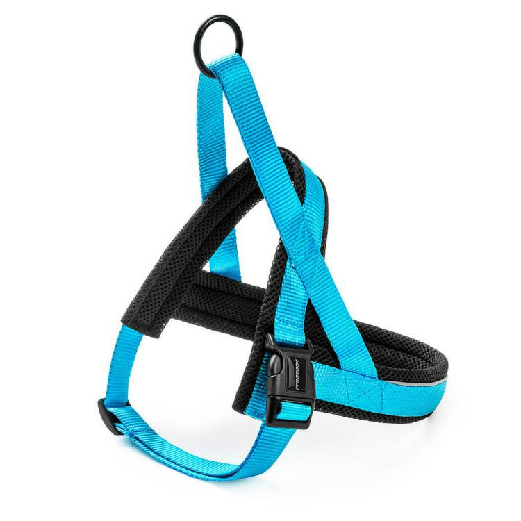 Freezack Harness Nordic Basic Turquoise XXS