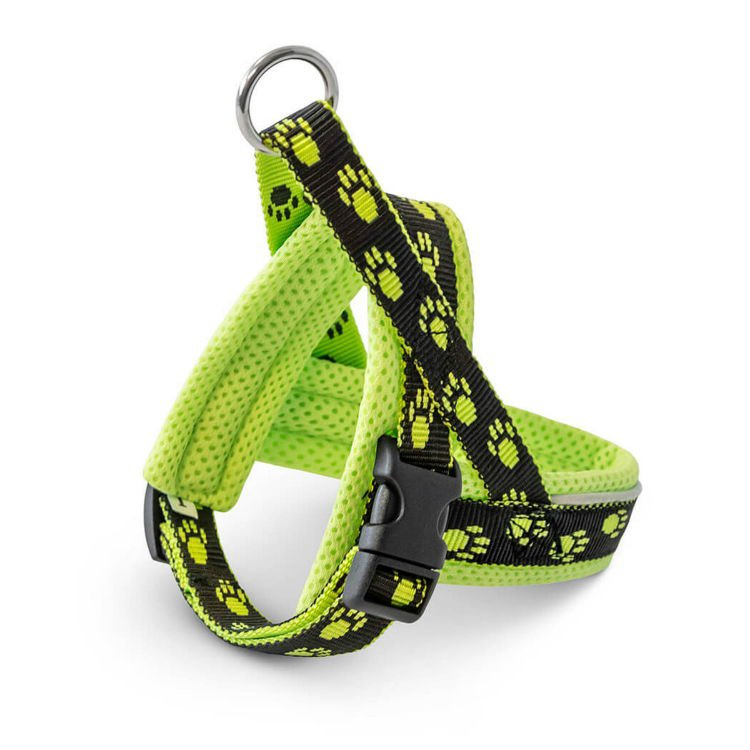Freezack Harness Nordic Yellow Mini4