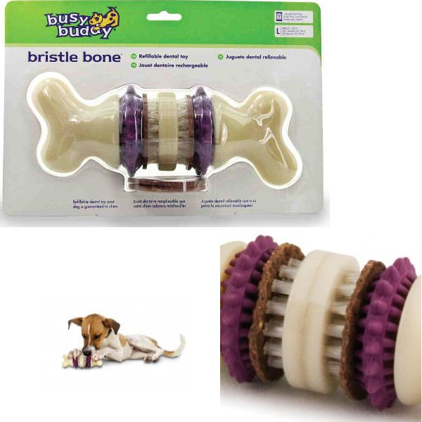 Busy Buddy Bristle Bone L