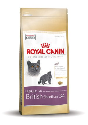 royal canin iedere kat en hond verdient zijn eigen royal canin. Black Bedroom Furniture Sets. Home Design Ideas