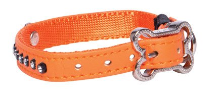 Rogz Lapz Luna Side Halsband Orange XS - 11mm