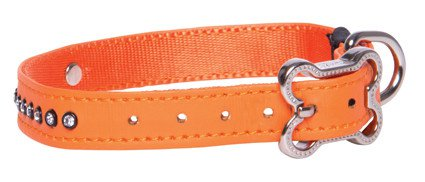 Rogz Lapz Luna Side Halsband Orange S - 13mm