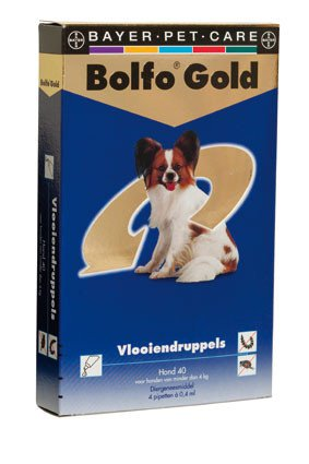 Bolfo Gold Hond 40> 4 Pipet