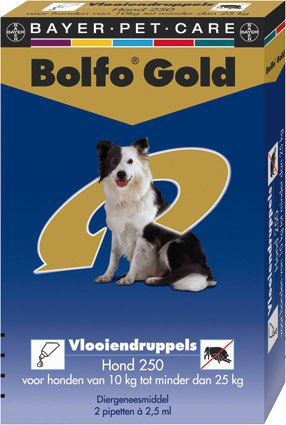 Bolfo Gold Hond 250 > 2 Pipet