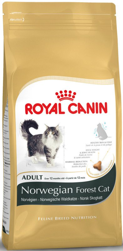 Royal Canin Norwegian Forrest Cat Adult - 10 kg.