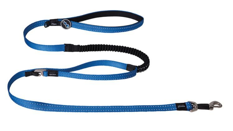 Rogz Snake Control Lead Blue - 16 mm x 140 cm