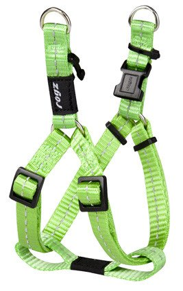 Rogz Nitelife Step-in H Lime S - 11mm